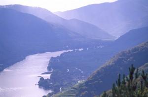 austrialower-austria-wachau-wine-landscape-autum-harvestdanube-river-3